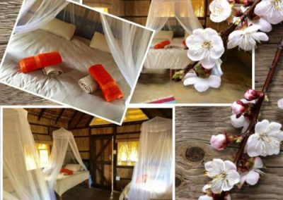 Mango Beach Rooms